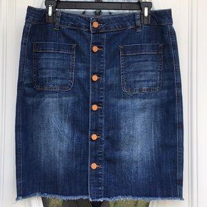 Lord & Taylor Size 31 Skirt EUC